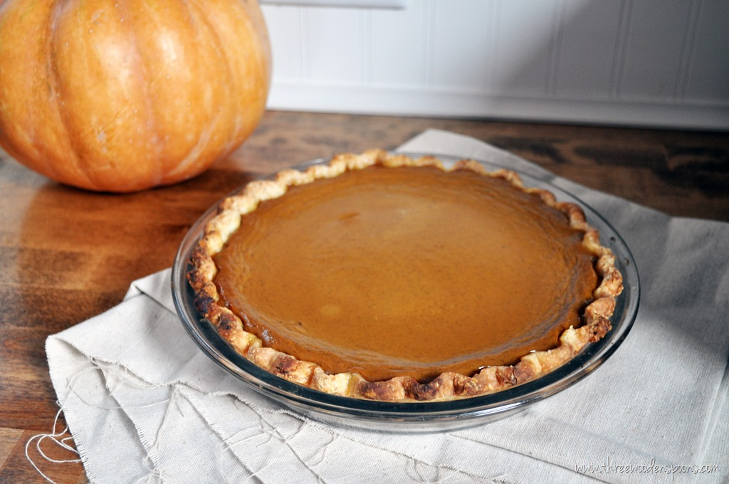 baking illustrated pumpkin pie